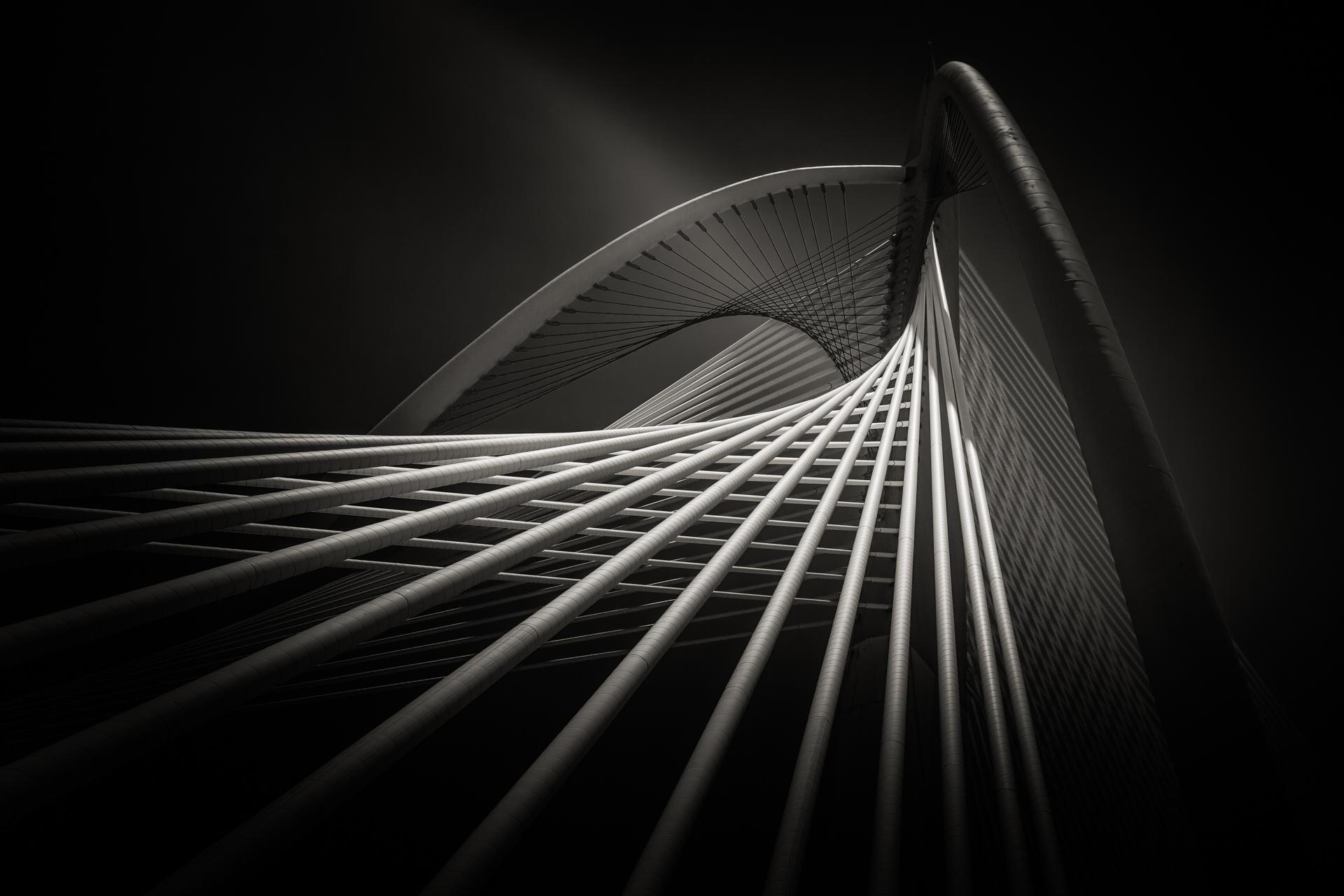 Bridge-Seri Wawasan 1.jpg