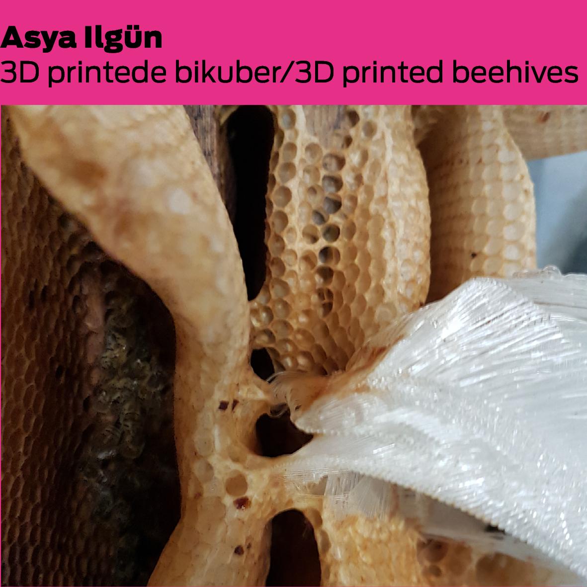 Asya Ilgün (A): 3D-printet bikube / 3D printed beehive