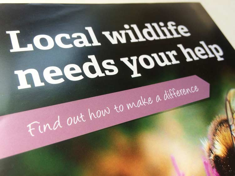 sussex-wildlife-leaflet-cover-close.jpg