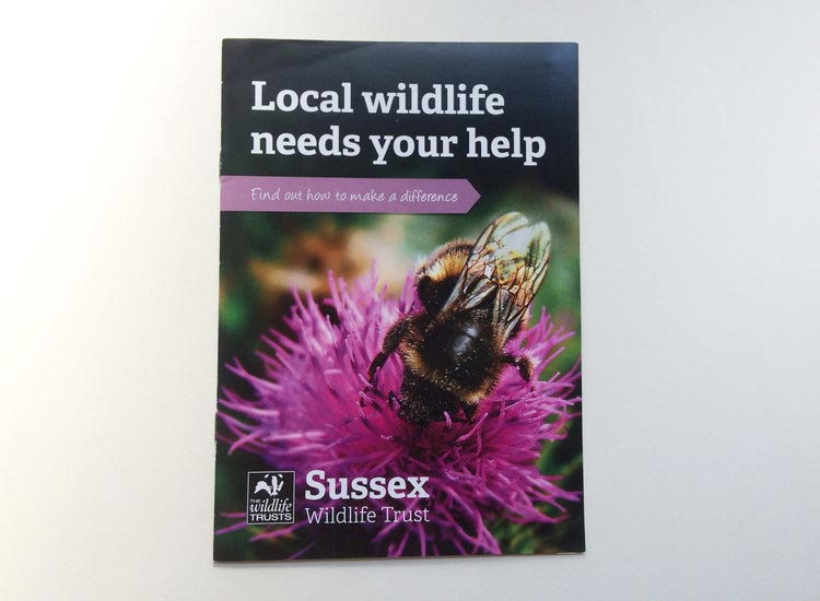 sussex-wildlife-leaflet-cover.jpg