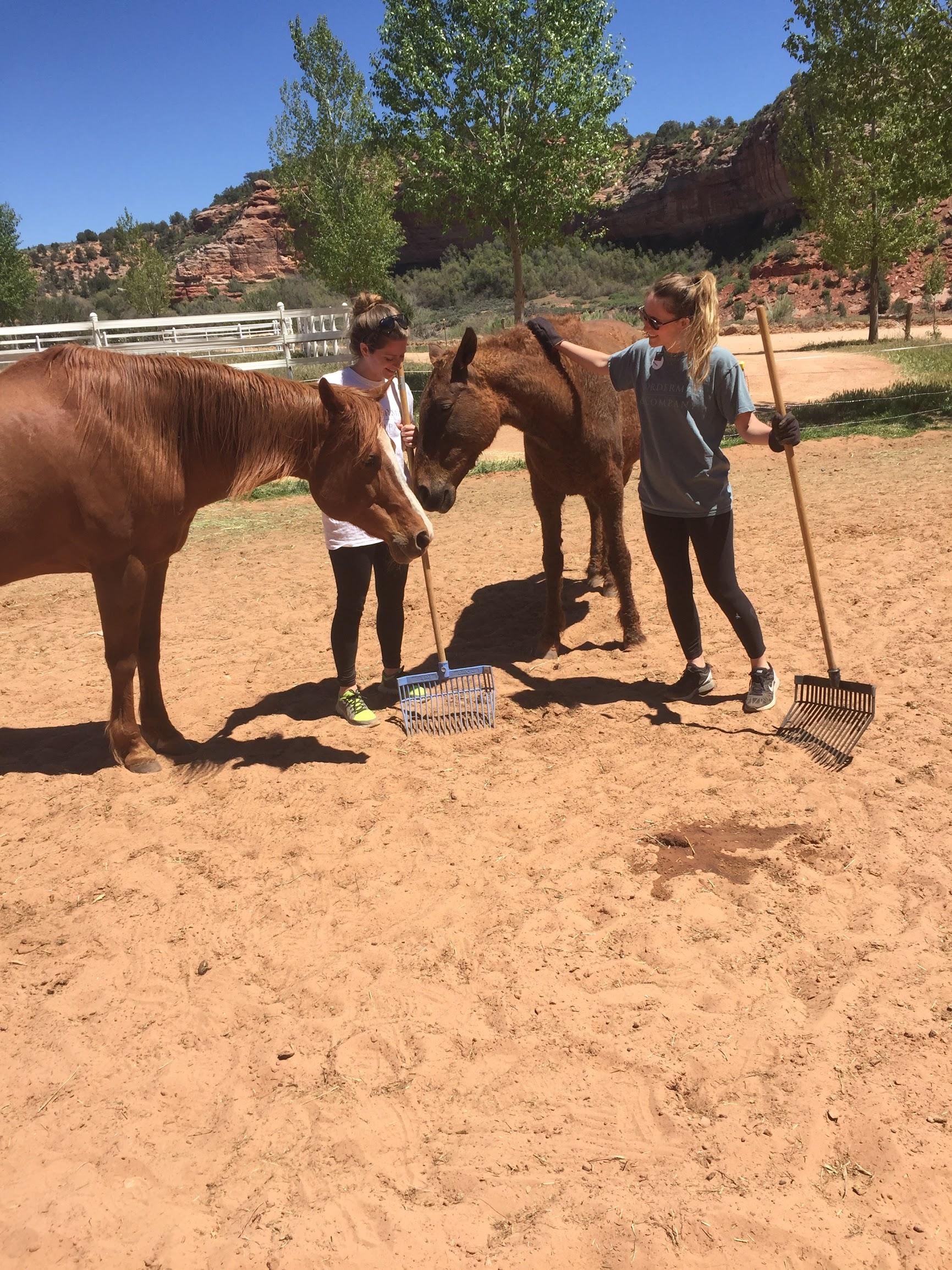 Laura Hannah w Horses.JPG