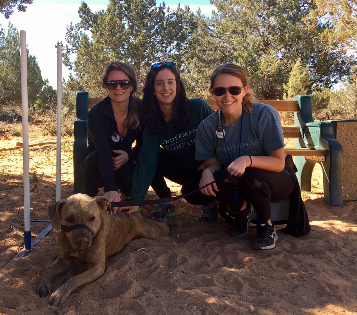 Best Friends Animal Sanctuary Utah