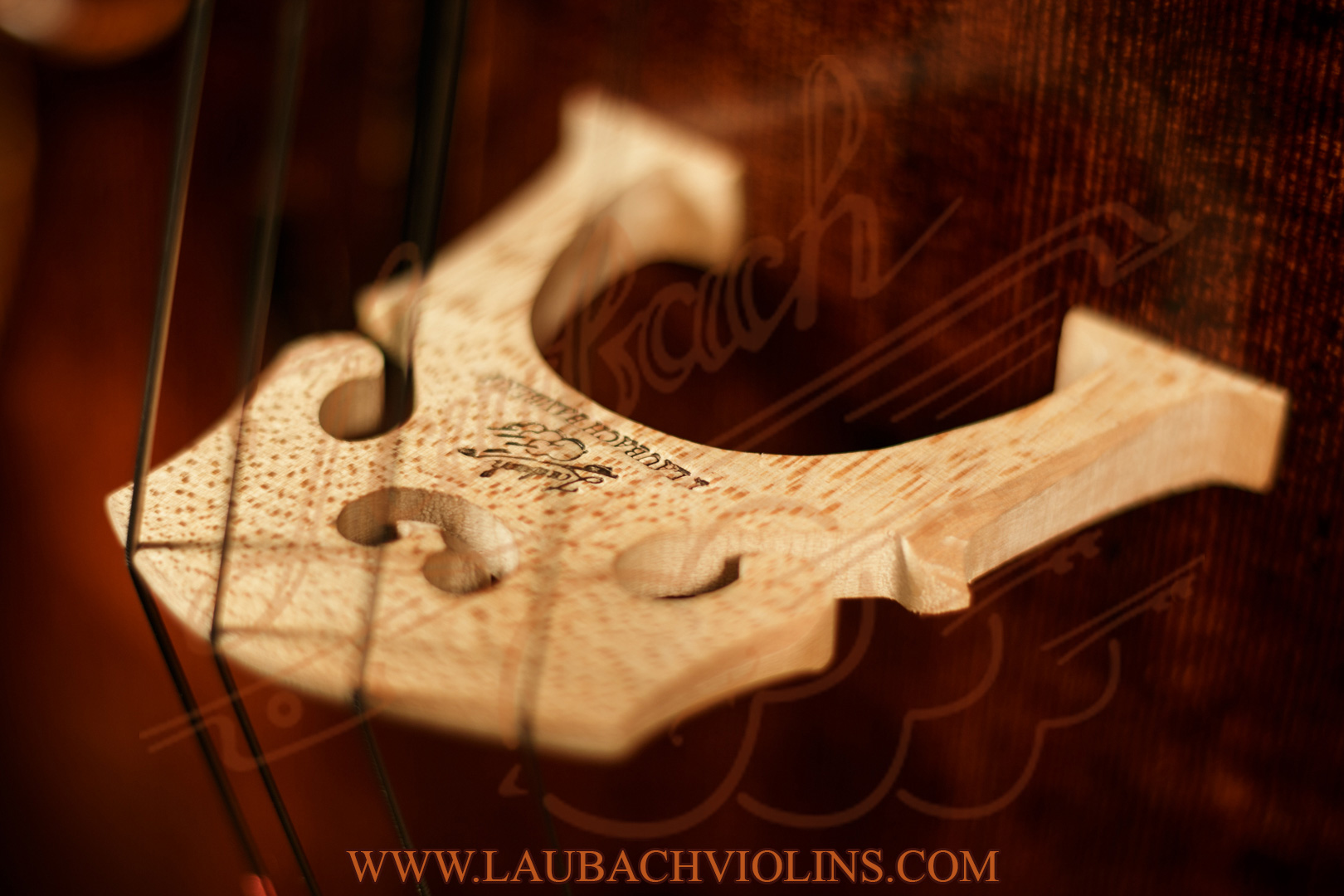 laubach-cello-168-3.jpg