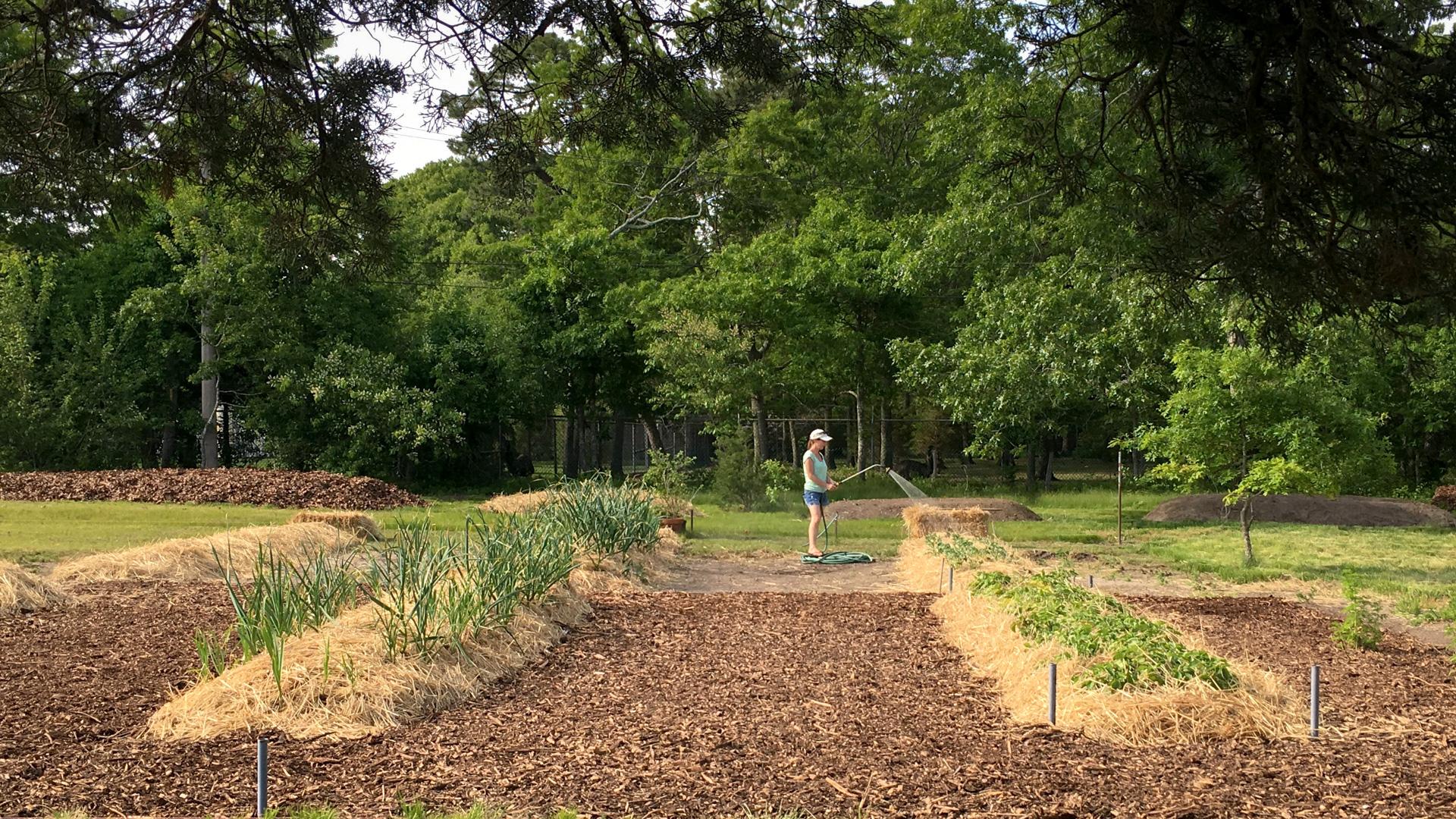 Heritage Garden - Anne watering hugelkultur - 1920x1080px.jpg