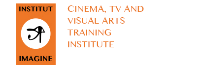 The Imagine Institute   The  Imagine Institute is a unique Cinema, TV and visual arts training institute located in Ouagadougou and serving the wider region. The Institute was part of the evaluated programme.