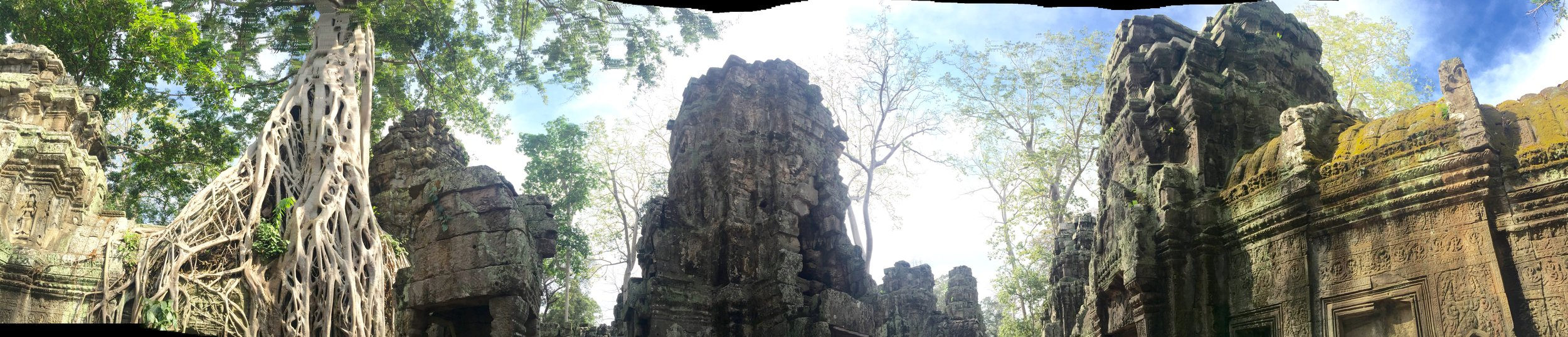 A panoramic of Ta Prohm Temple.
