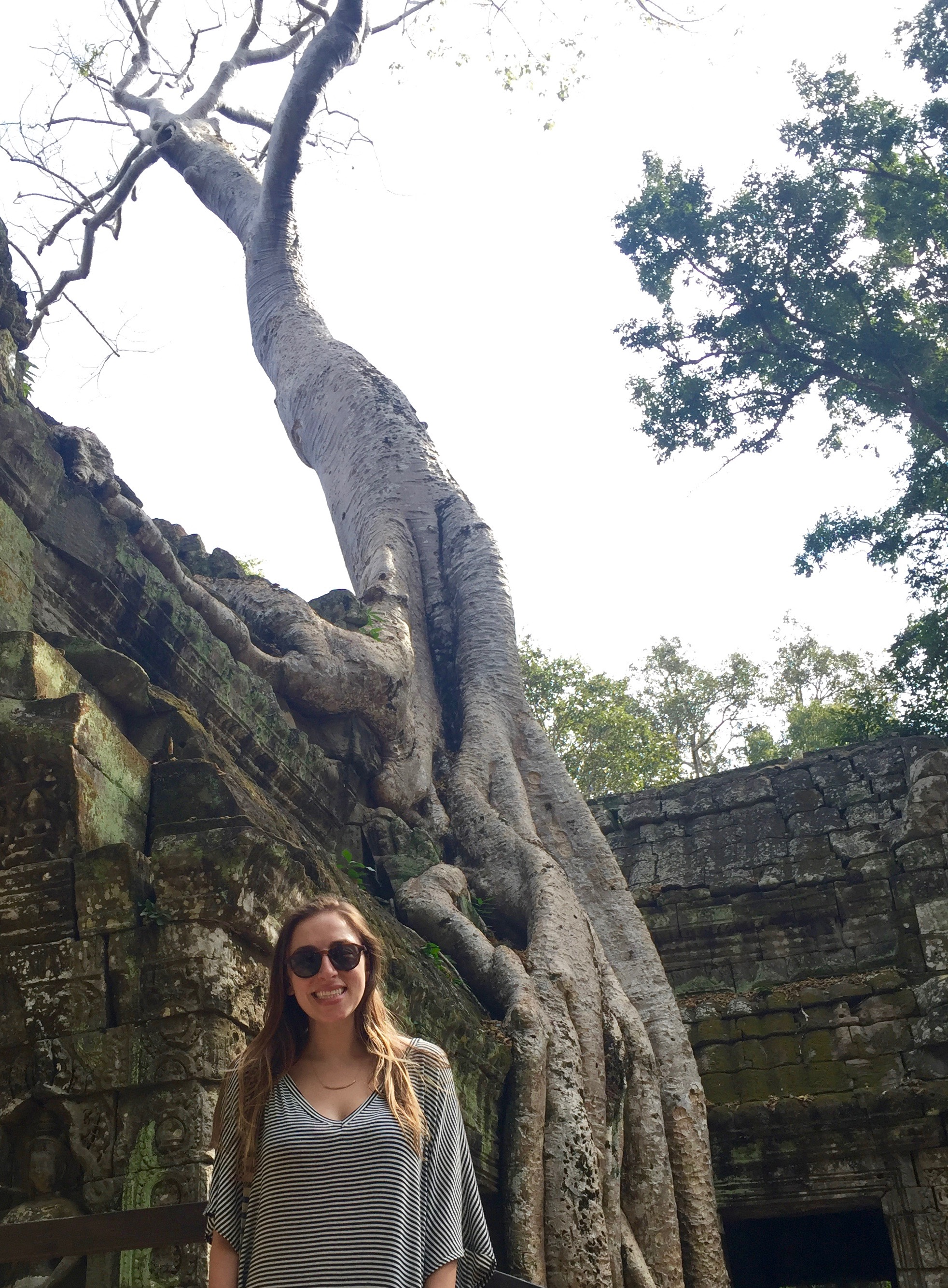 A strangler fig growing up the side of Ta Prohm.