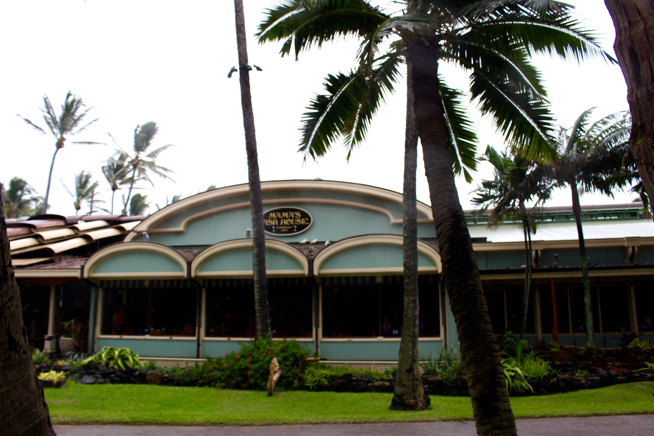 Mama's Fish House is nestled on a gorgeous beach on the coast of Northern Maui.