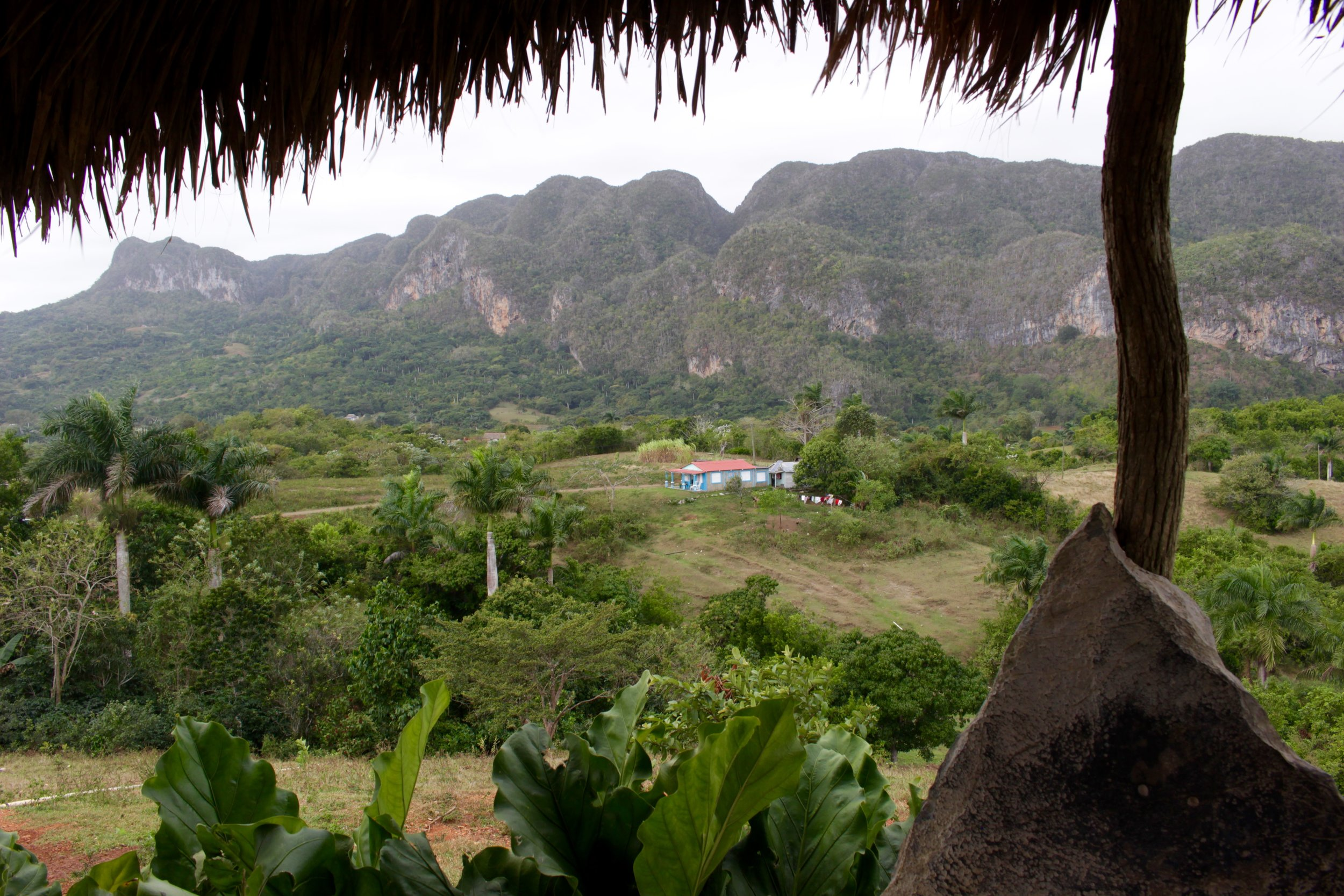 An overlook at a little restaurant in Viñales. Ride your bike to the top and have lunch overlooking the valley.