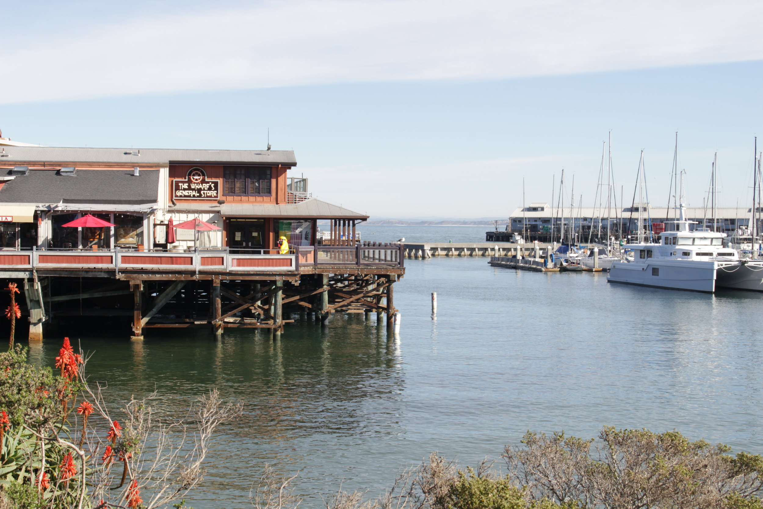 The Monterey Wharf that we passed on our walk from the hotel to Cannery Row.