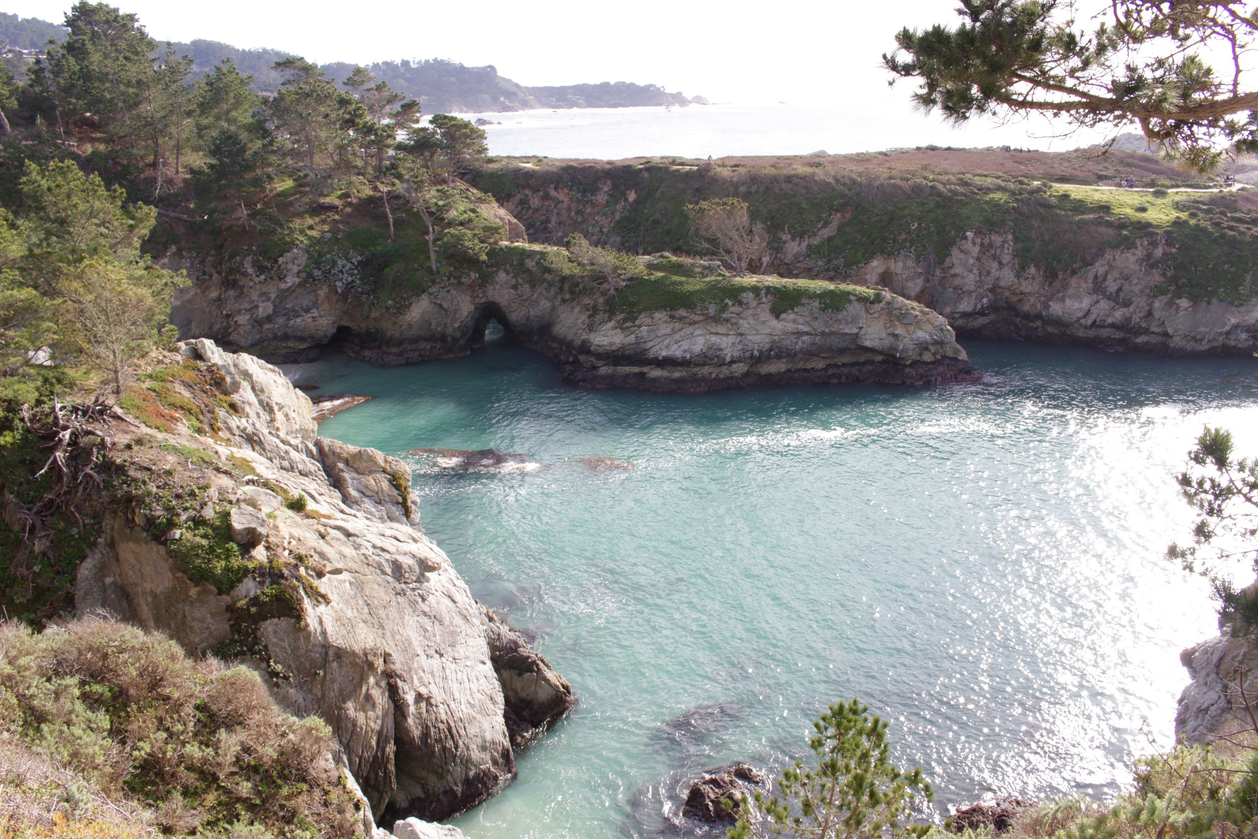 Breathtaking views on our Point Lobos hike.