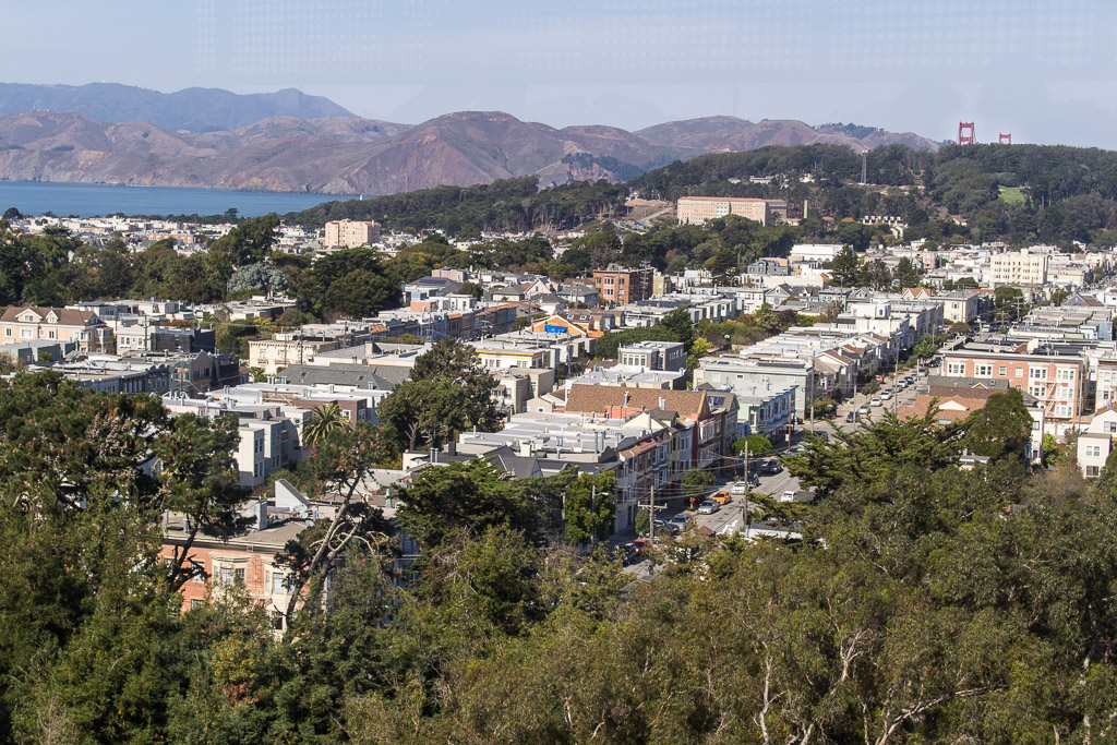 The view from  Hamon Tower in the  de Young Museum . On a clear day like this you can spot the Golden Gate Bridge!