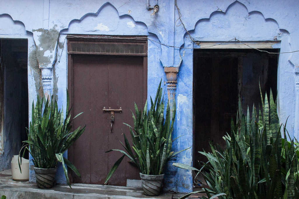 The prettiest blue doorway in Delhi.