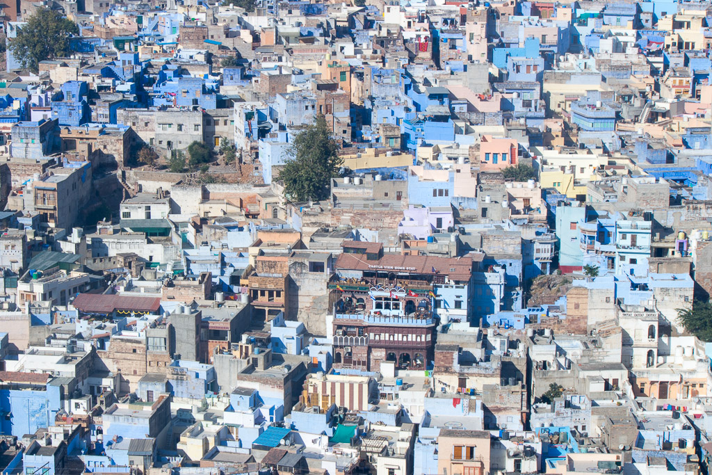 Looking out at a sea of blue in Jodhpur, India.