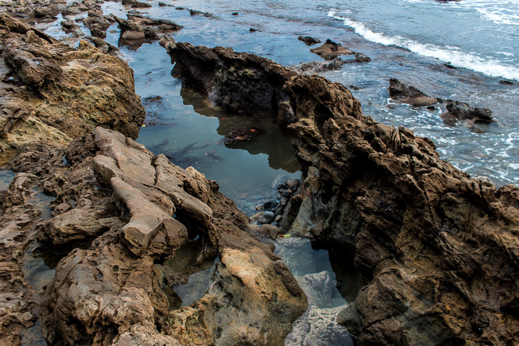 These tide pools are easily accessible from Main Beach in Laguna.