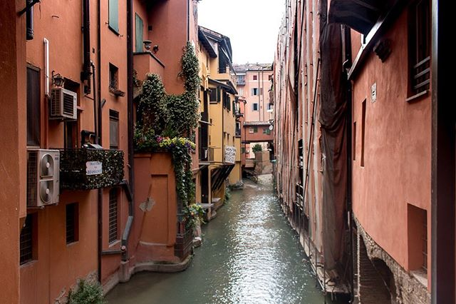 Did you know Bologna has hidden canals? There were over 35 miles of canals in the 12th century that transported both people and goods. They were since covered up, but you can still find them hidden behind a little door on Via Piella. #hiddencanal #bologna #bolognaitaly #finestrelladiviapiella #twobluepassports #travelstoke