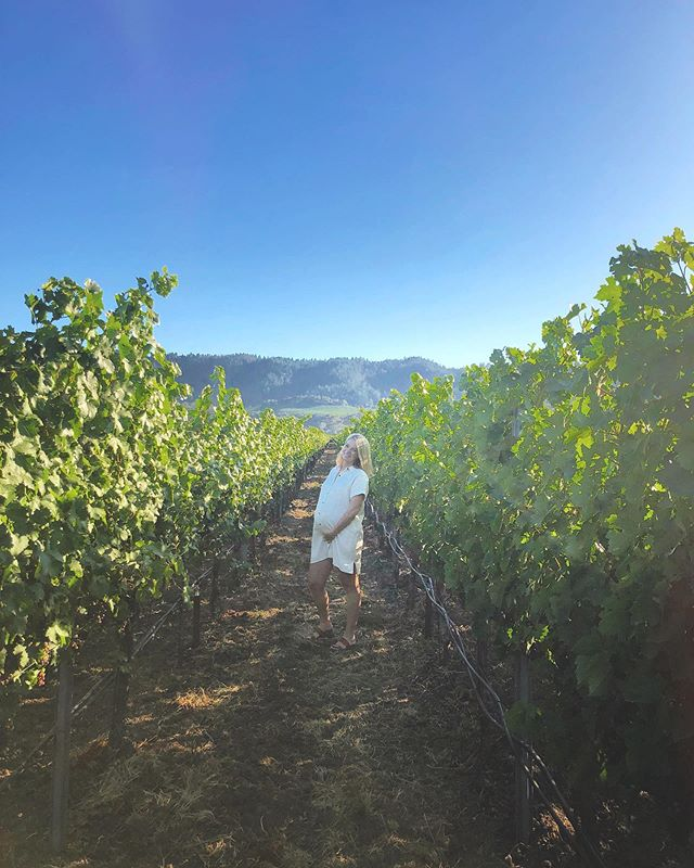 31 weeks with Lucy in wine country. ☀️ ☀️ ☀️