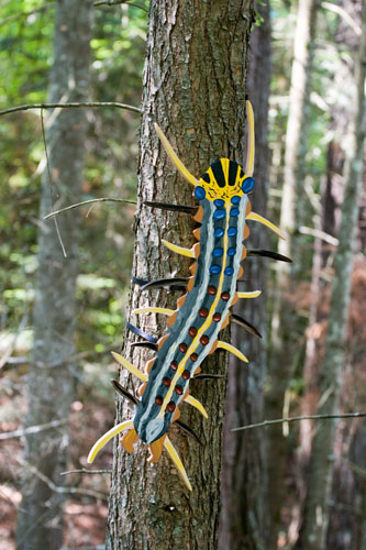 Gypsy Moth (invasive),  2007  Enamel on plywood  Forest Art Wisconsin, Northern Highland-American Legion State Forest