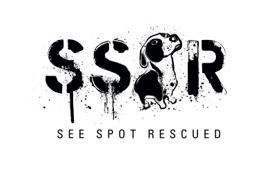 See Spot Rescued