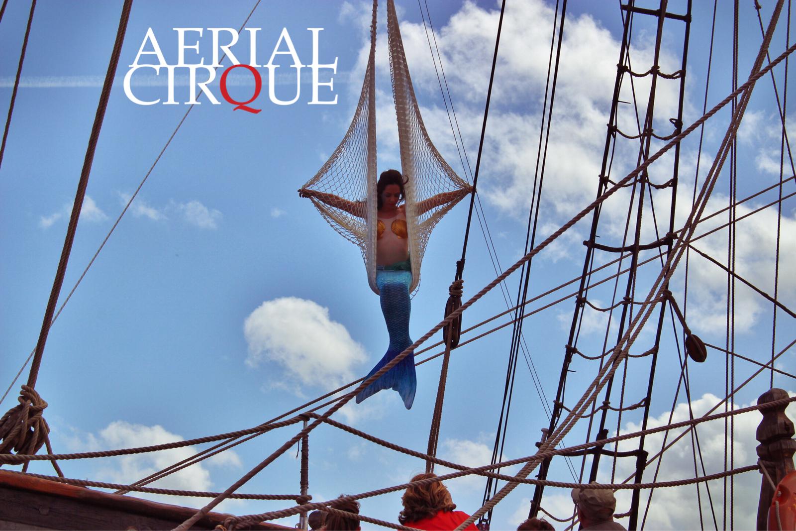 AerialCique_ship3.jpg