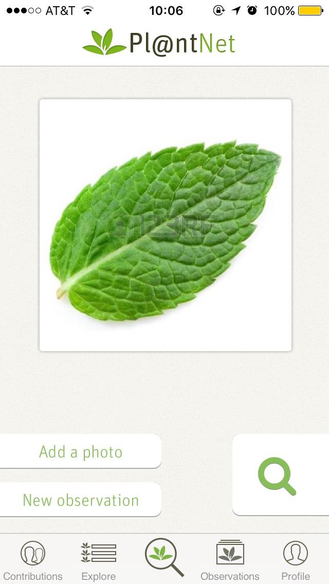plantnet3.jpg