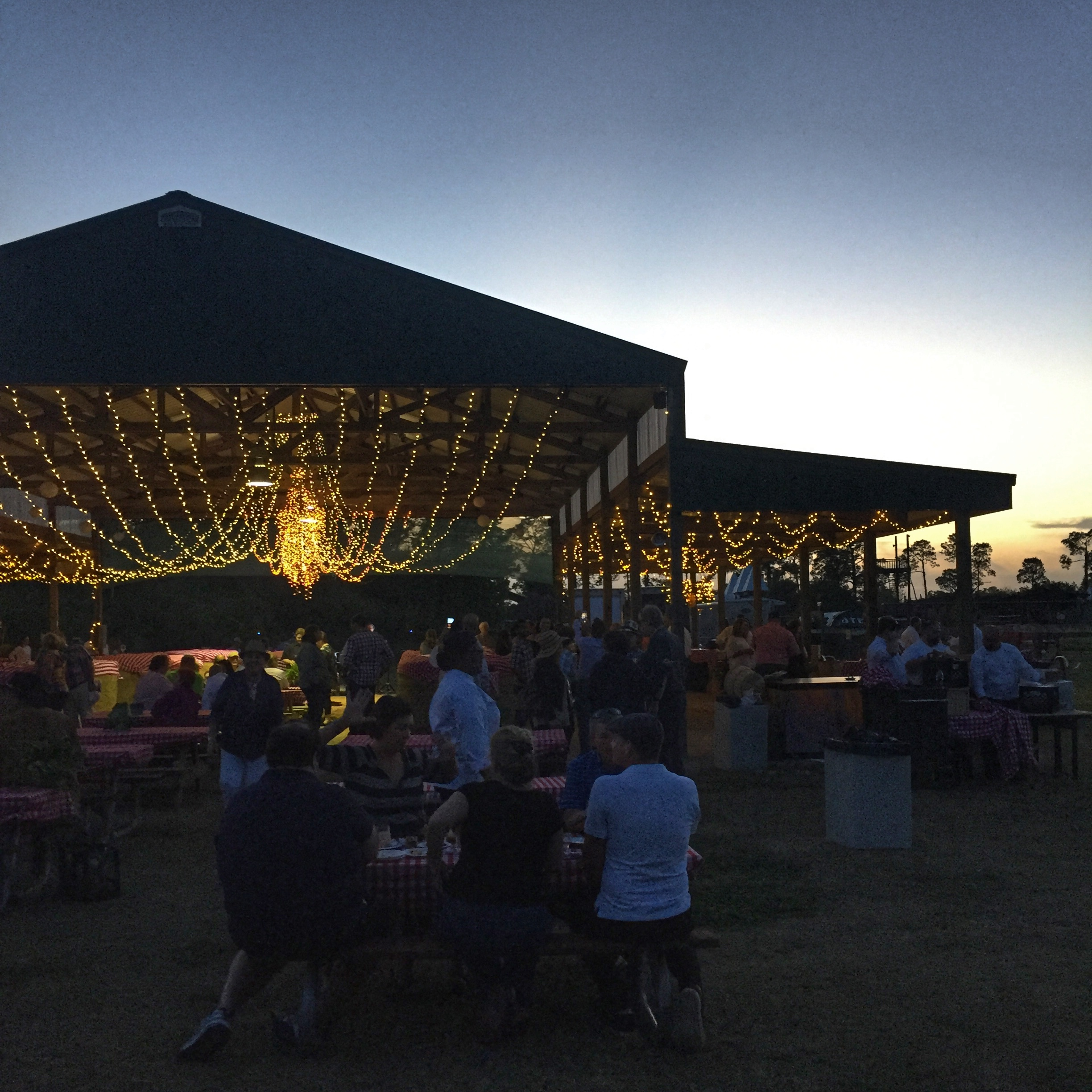 The Edible Orlando Field to Feast dinner, which started at 4:30pm,began twinkling at dusk. Photo courtesy of Kristen Manieri, Orlando Date Night Guide