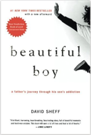 10 Excellent Memoirs that Make Great Gifts Beautiful Boy a Father's Journey through his son's addiction.png