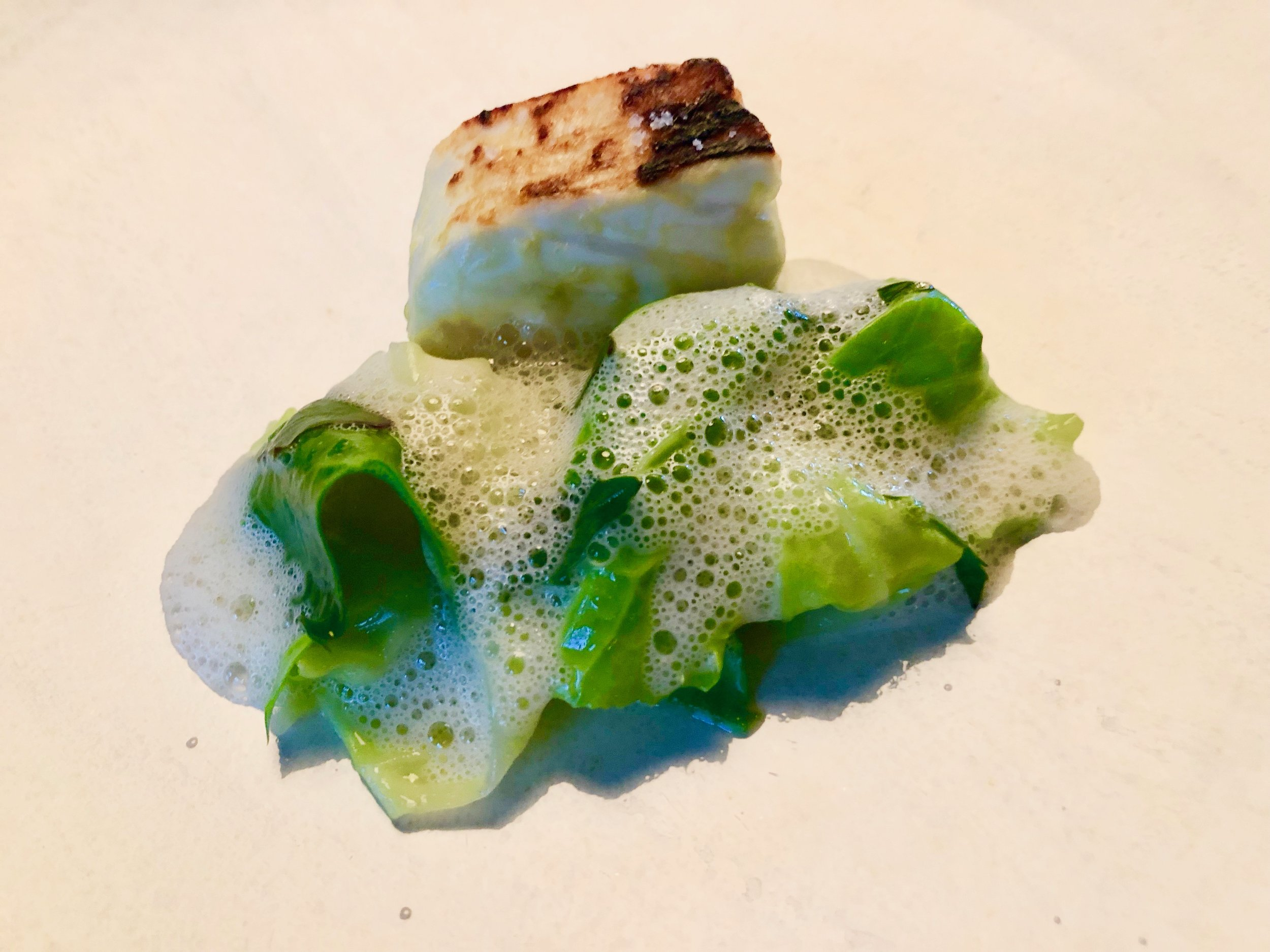 Marinated and grilled North Atlantic halibut with salted plums and summer cabbage