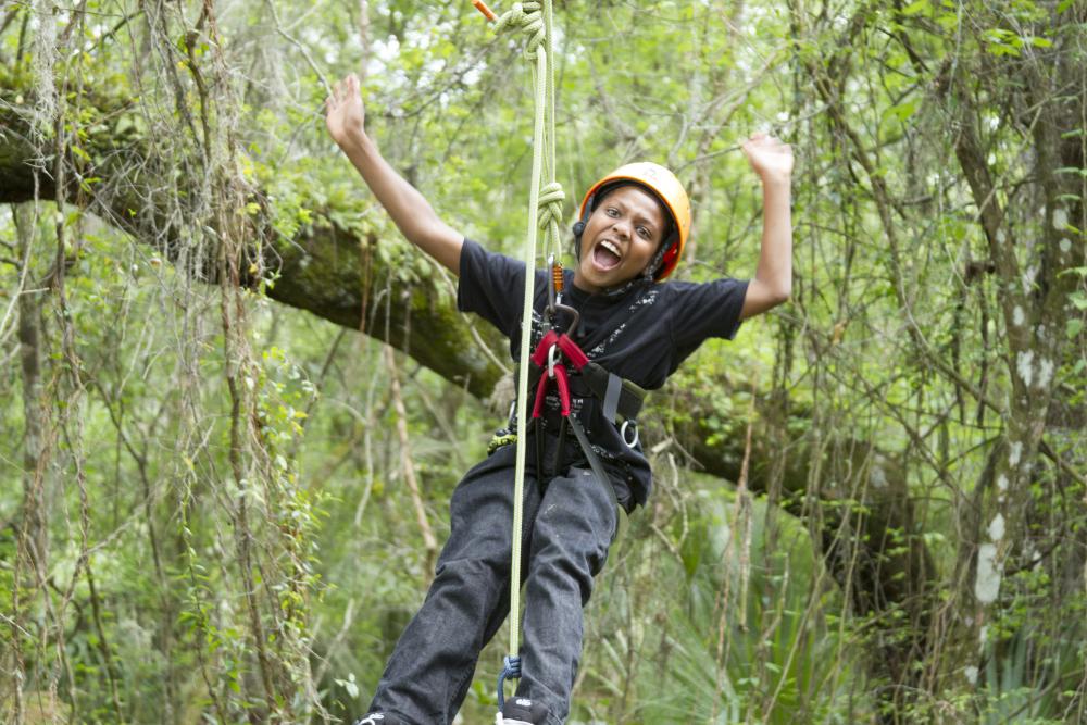 tree climbing joy.jpg