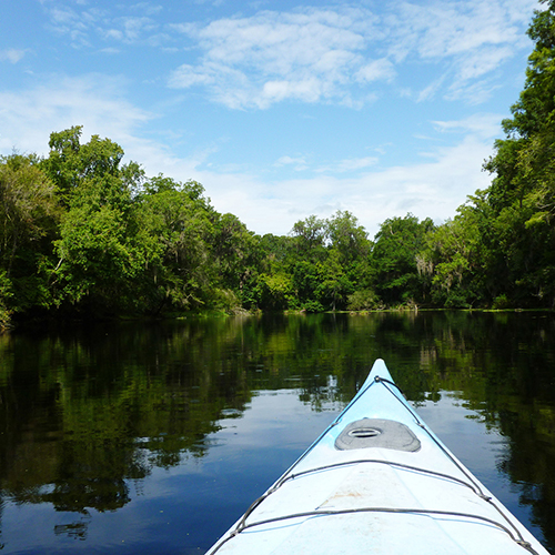 Kayaking on the Santa Fe River - photo by Anna Mikell, courtesy   Visit Gainesville