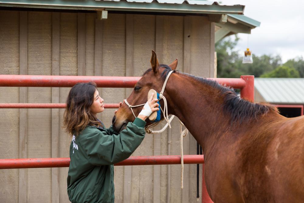 Thacher_HorseFinals-12.JPG