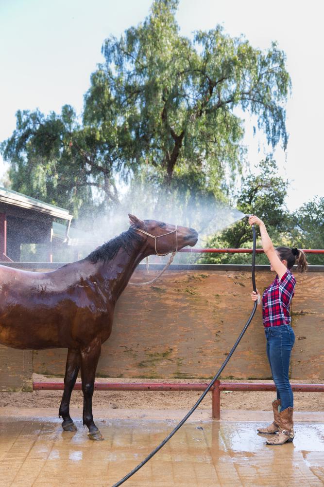 Thacher_HorseFinals-16.JPG