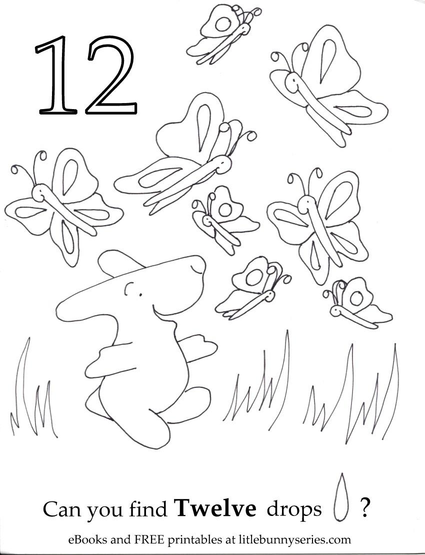 Number 12 Seek and Find PDF