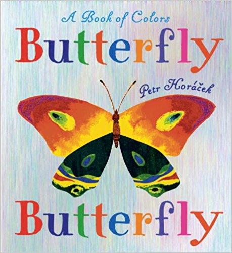 Butterfly Butterfly.jpg