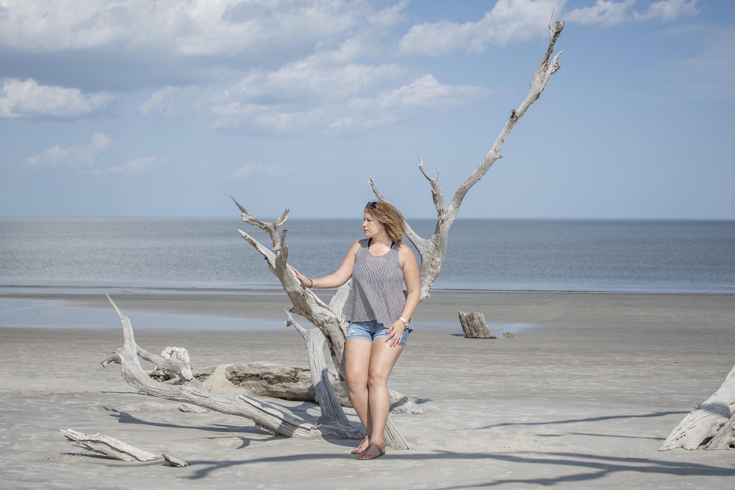 Driftwood Beach in Jekyll Island, GA