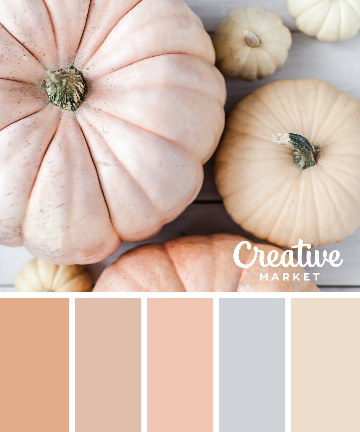 fall color palettes for what to wear to a photo session