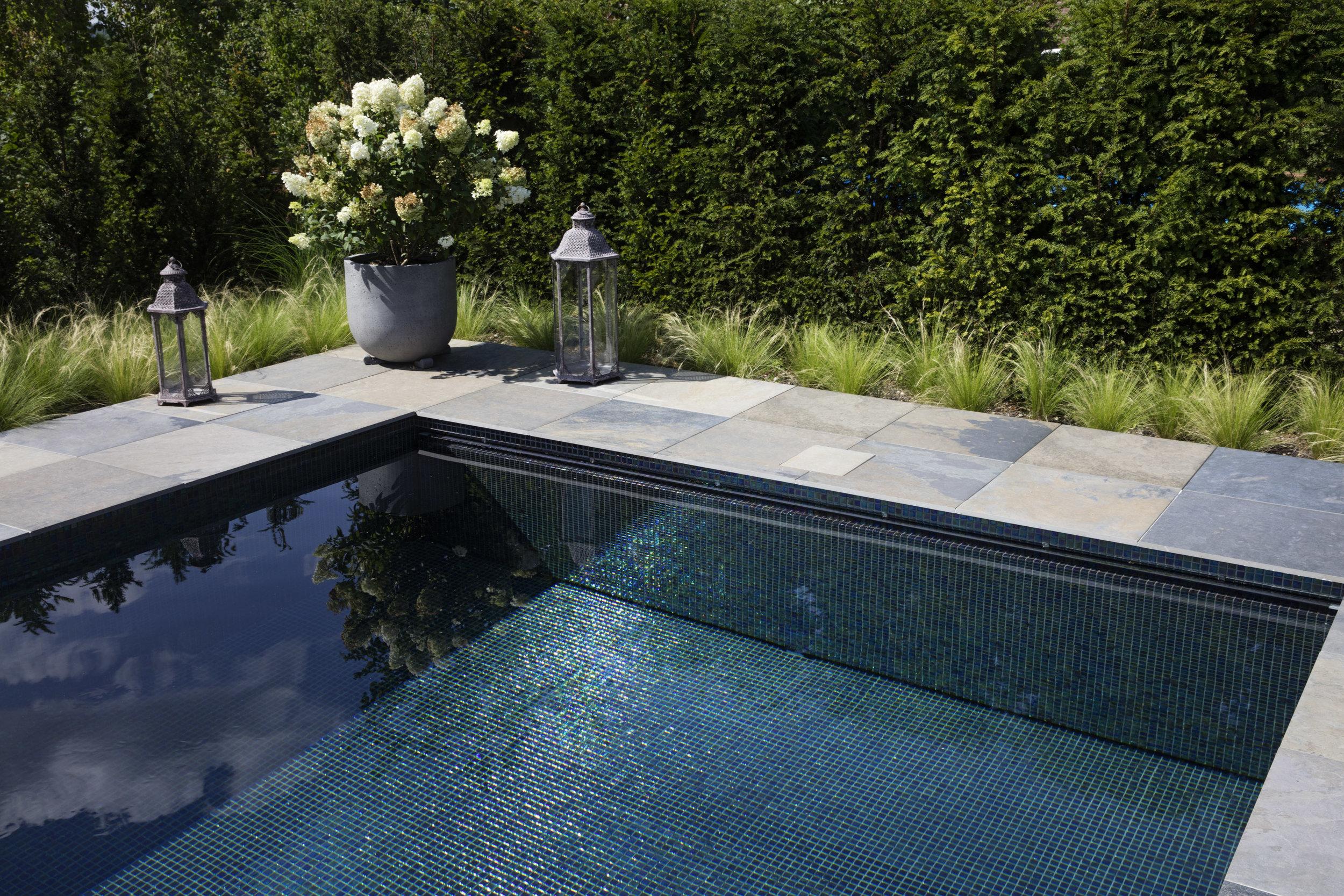 Riviera Pool MLine