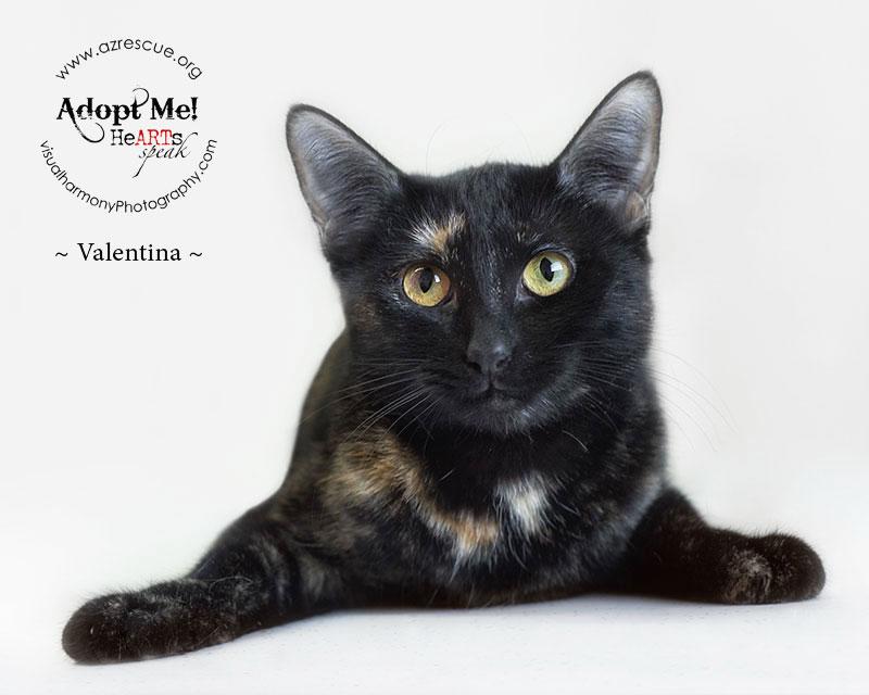 adopt-valentina 2