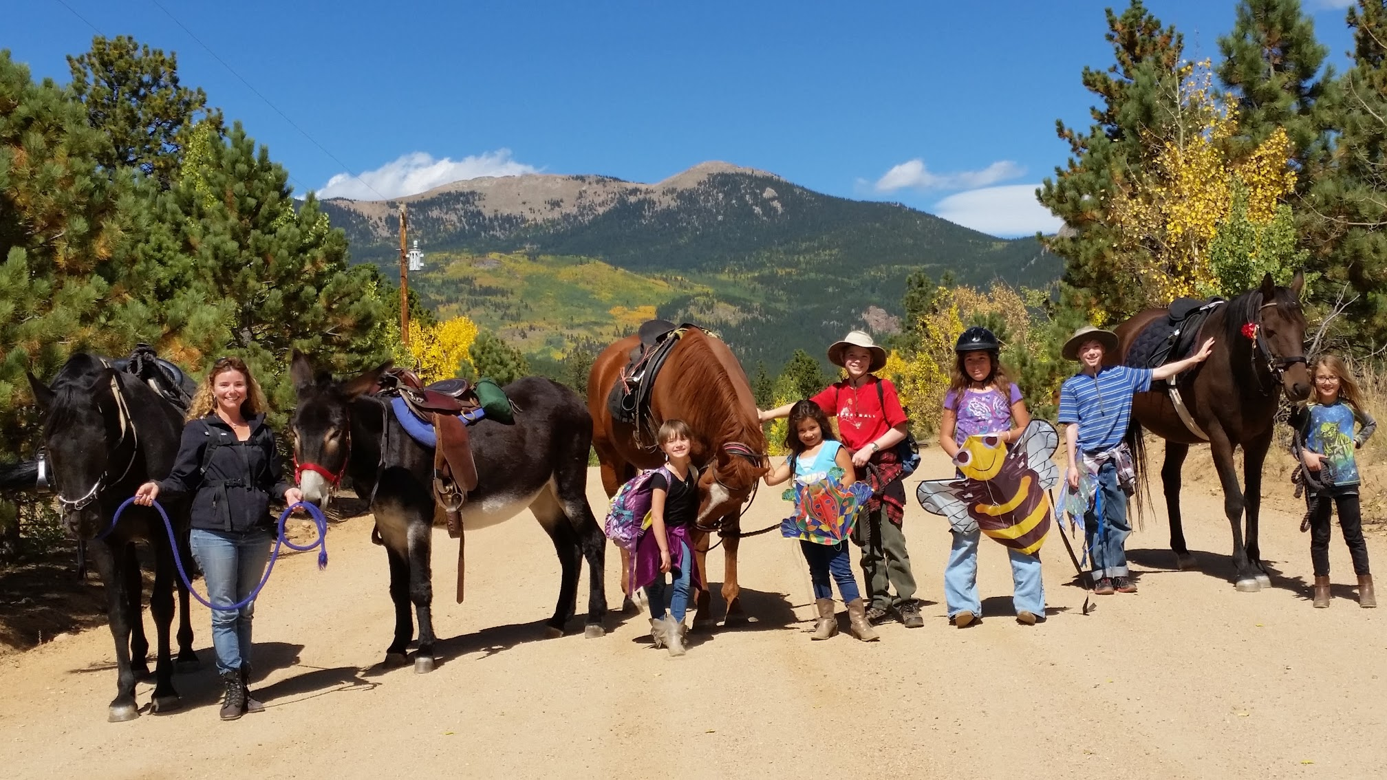 Great one all the horses in the fall walking HORSES 101 kids.jpg