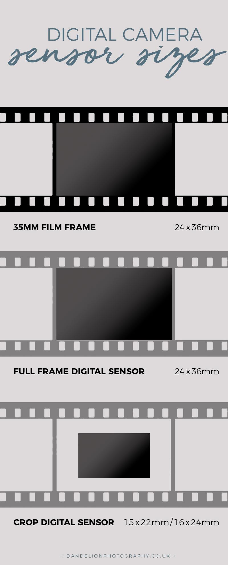 35mm film and sensor diagram.jpg