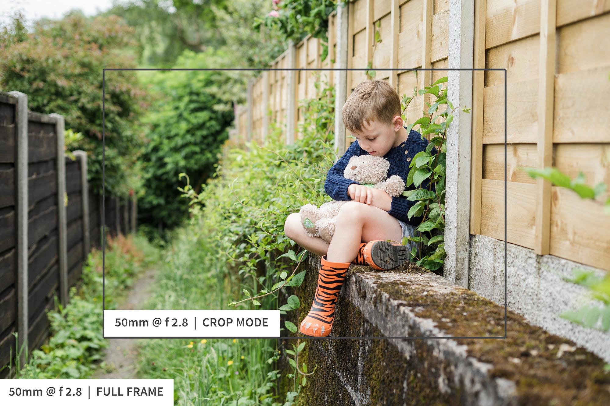 fenceeev2.jpg