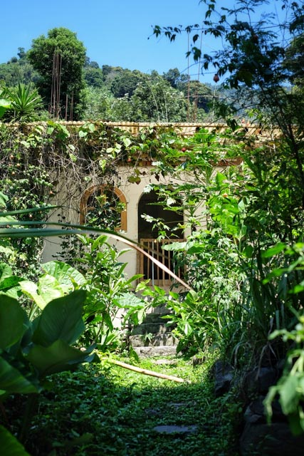 Atitlan Organics Permaculture Course