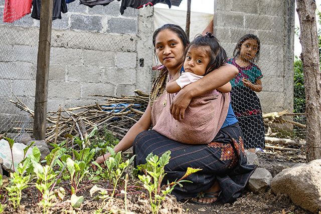 Permaculture Community Service Project in Tzununa, Lake Atitlan, Guatemala, 2019 2020 2021, kitchen gardens, food security, volunteer community service with Atitlan Organics