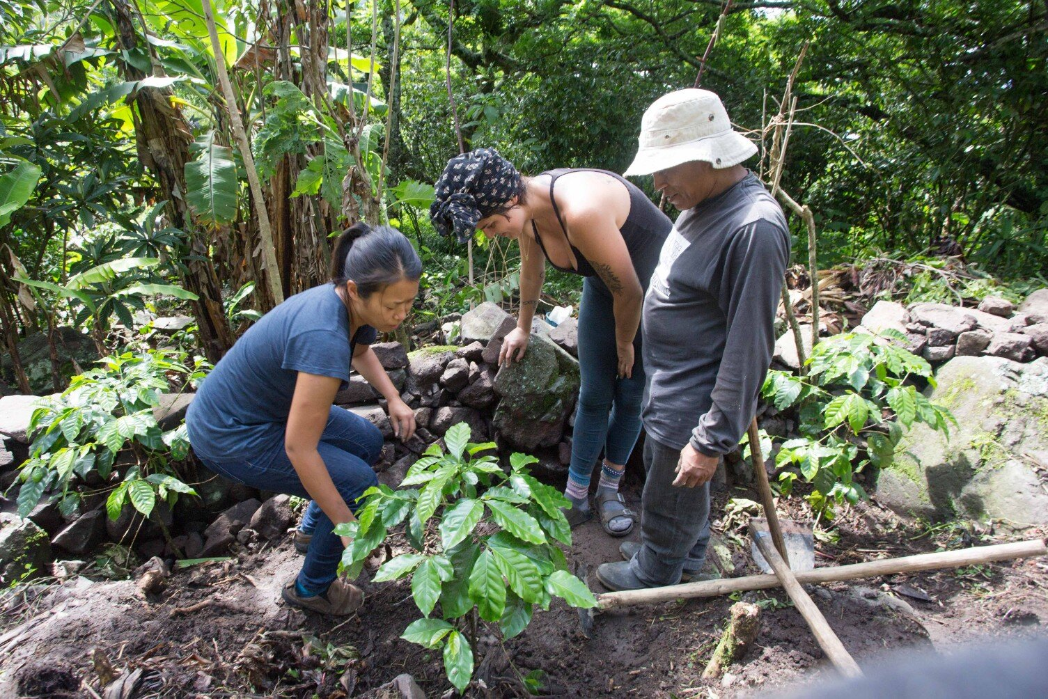 Foundations of Regenerative Design is a 2 week course on Permaculture and Natural Building with Atitlan Organics in Tzununa, Lake Atitlan, Guatemala 2020 2021