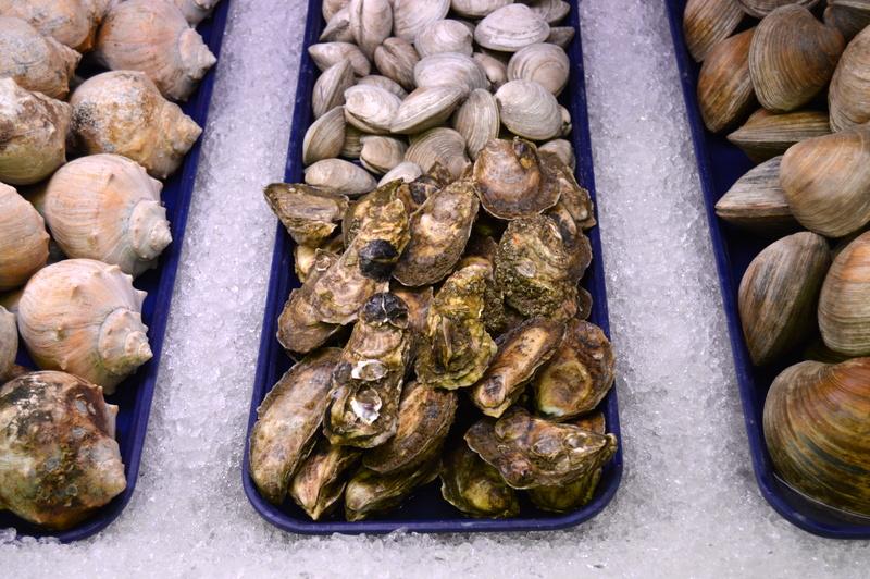 Wellfleet Oysters -