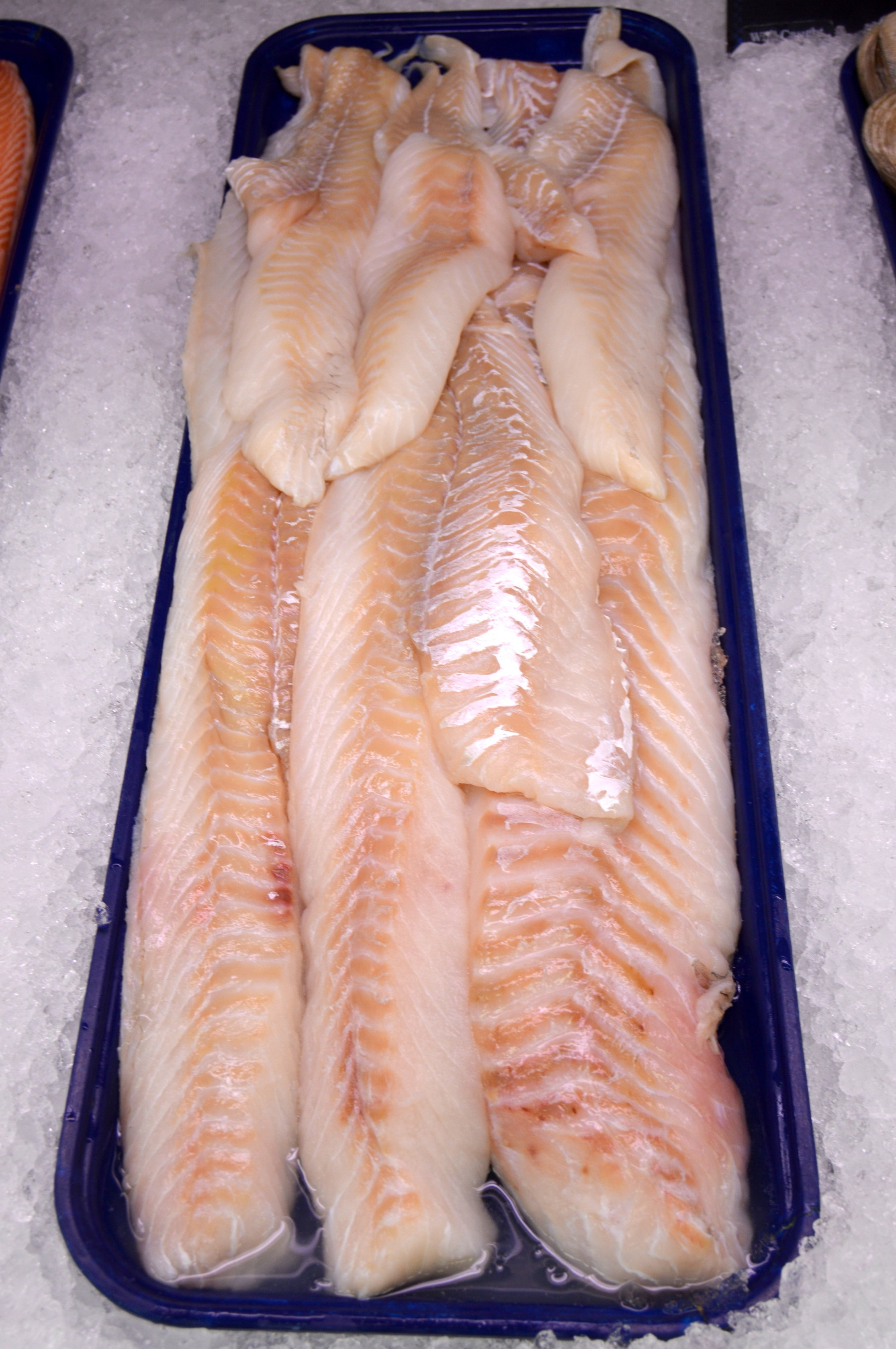 Codfish Filetes