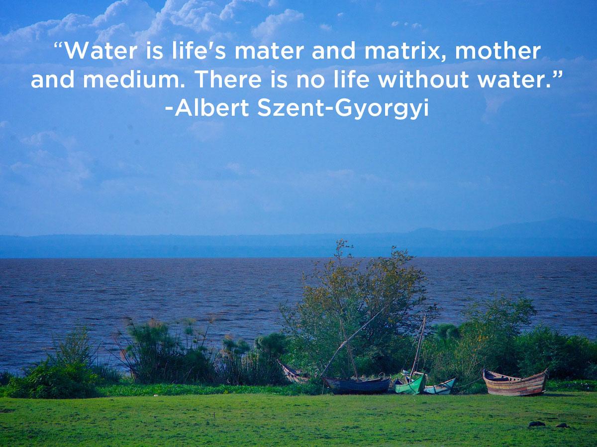 water-is-life.jpg