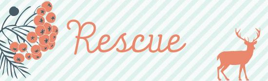 rescue-01