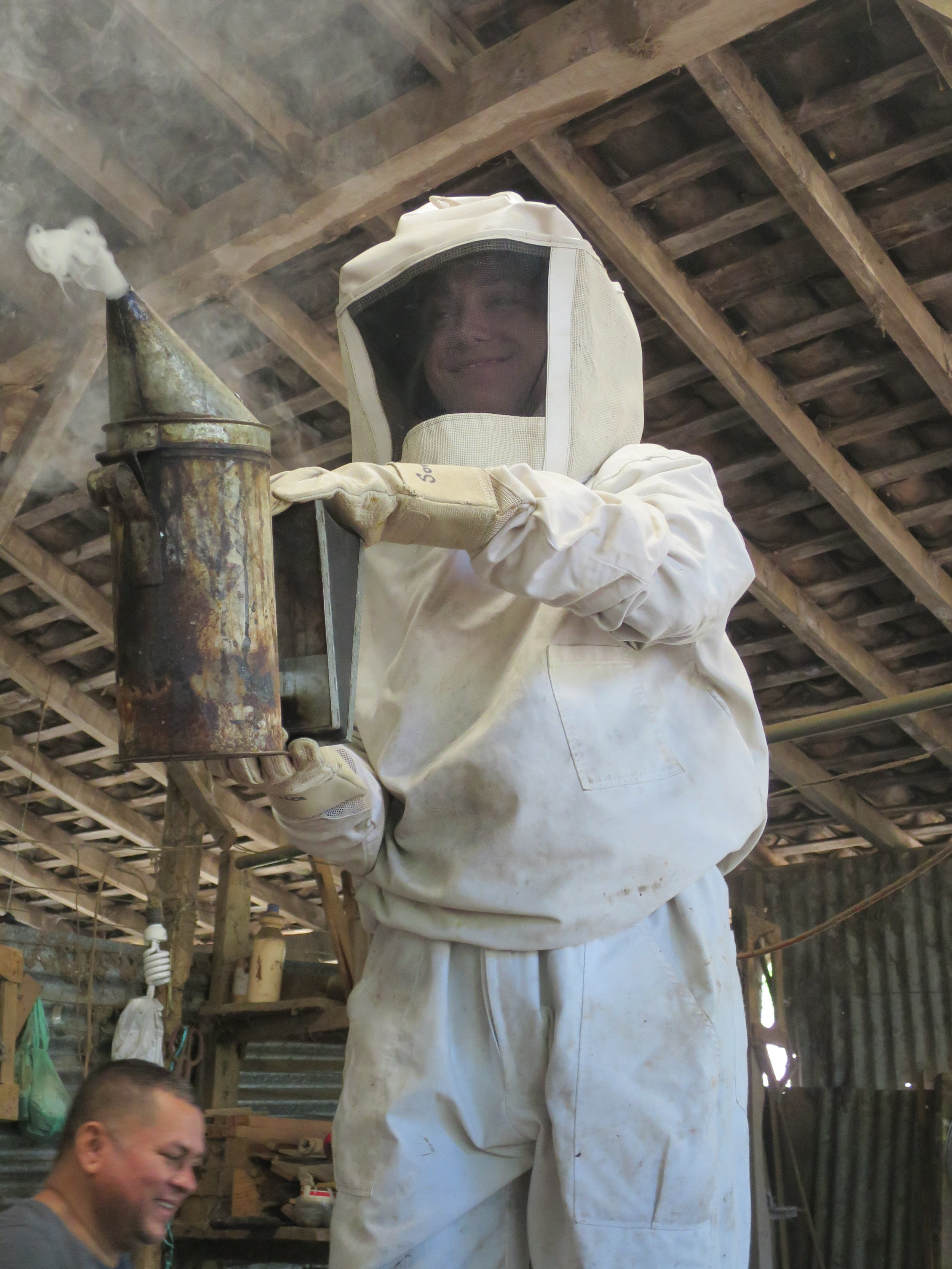 Busy as bees. - Learning about the growing Nicaraguan artisan honey trade.