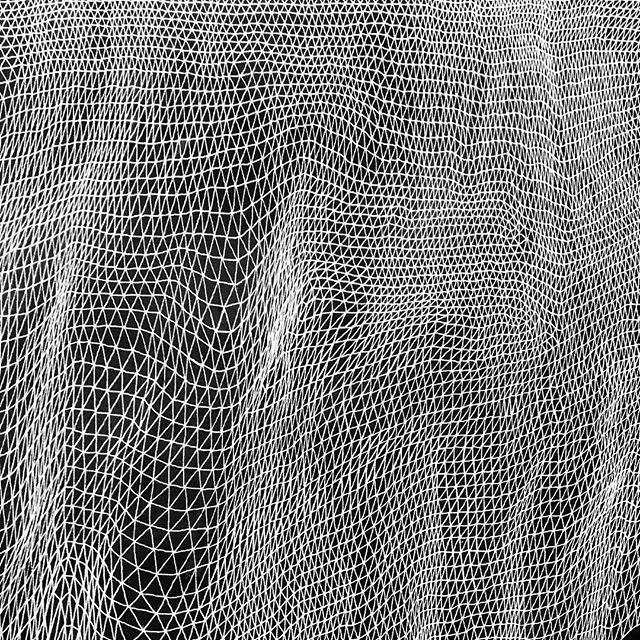 Net #tessellation #tessellate #triangle #art #brooklynart #artist #milkyway #firmament #stars #brooklynartist #nycart #nycartist #williamsburgartist #abstractart #abstractartpainting #abstractartist #lines #line #lineart #blackandwhiteart #mountains #terrain #diamond#instaart #instagood #artforsale #artforsalebyartist#inkwash#indiaink#ink